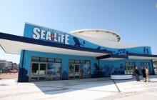 29/03/2011 Jesolo - Acquario Sea Life  © Errebi